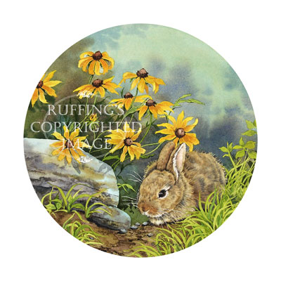 Hiding, Eastern cottontail rabbit with black-eyed Susans, by A E Ruffing
