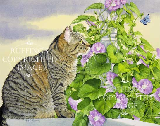 Henrietta and the Morning Glories tabby cat and flowers art print by artist A E Ruffing