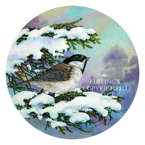 Carolina Chickadee and Eastern Red Cedar by A E Ruffing