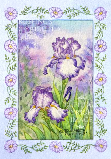 """Purple and White Iris"" ER23 by Elizabeth Ruffing Floral"