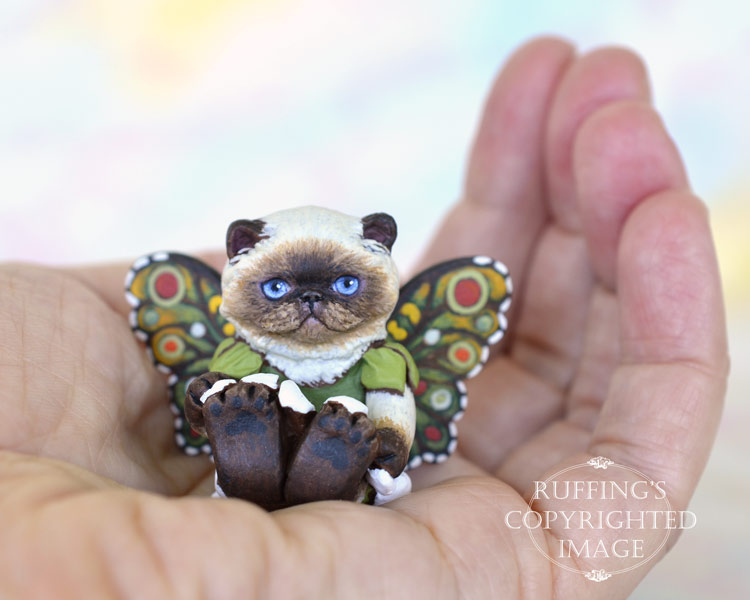 Fern, miniature Himalayan fairy cat art doll, handmade original, one-of-a-kind kitten by artist Max Bailey