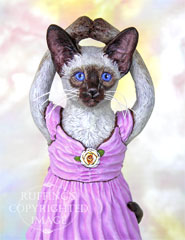 Jazzie the Siamese Ballerina, Original One-of-a-kind Cat Folk Art Doll Figurine by Max Bailey