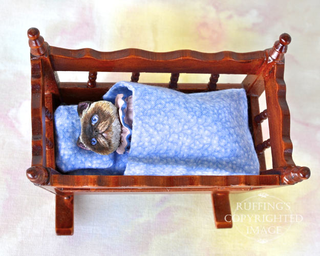 Marjorie, Original One-of-a-kind Dollhouse-sized Himalayan Kitten by Max Bailey