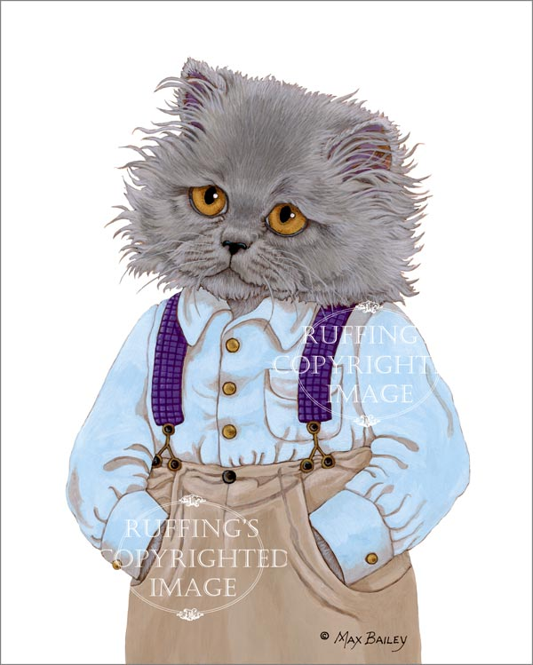 Herman the Blue Persian Cat, fine art kitty gray grey cat with suspenders print by artist Max Bailey