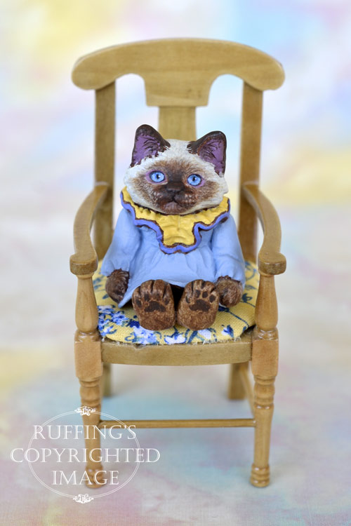 Paula, miniature Ragdoll cat art doll, handmade original, one-of-a-kind kitten by artist Max Bailey