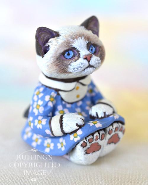 Primrose, miniature bi-color Ragdoll cat art doll, handmade original, one-of-a-kind kitten by artist Max Bailey