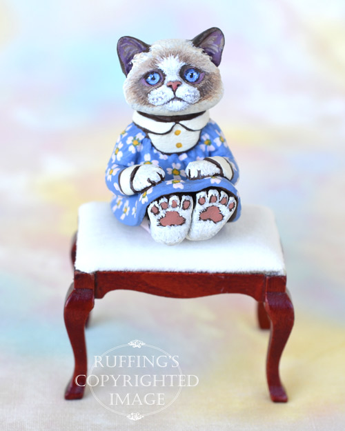 Primrose, miniature bi-color Ragdoll cat art doll, handmade original, one-of-a-kind kitten by artist Max Bailey
