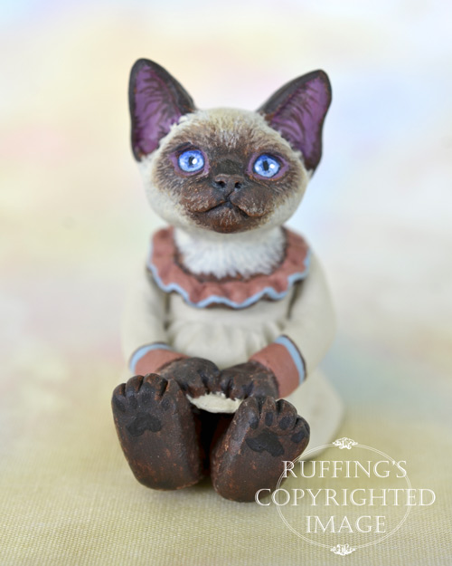 Sara, miniature Siamese cat art doll, handmade original, one-of-a-kind kitten by artist Max Bailey