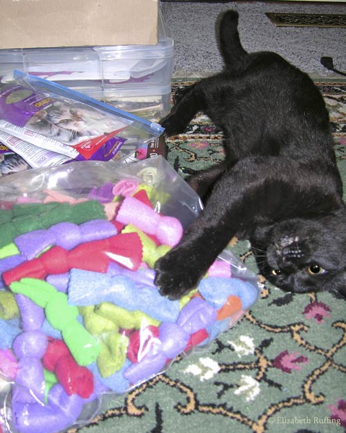 Zoomie, black kitty cat playing with a bag of catnip knots by Elizabeth Ruffing