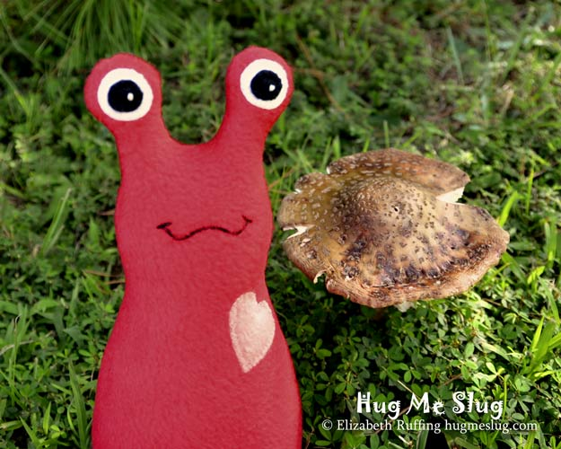 Slugterra and red fleece Hug Me Slug with a mushroom, original stuffed animal art toy by Elizabeth Ruffing