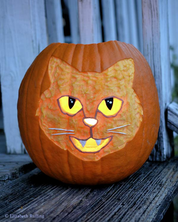 Halloween cat pumpkin by Elizabeth Ruffing
