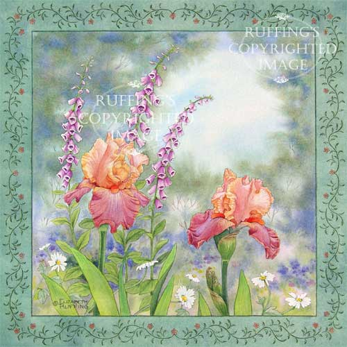 Iris and Foxgloves by Elizabeth Ruffing, watercolor with a decorative border