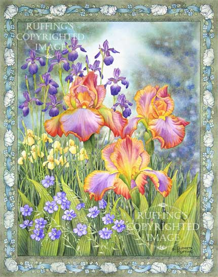 Jubilee by Elizabeth Ruffing, Iris and blue flax watercolor with a decorative border
