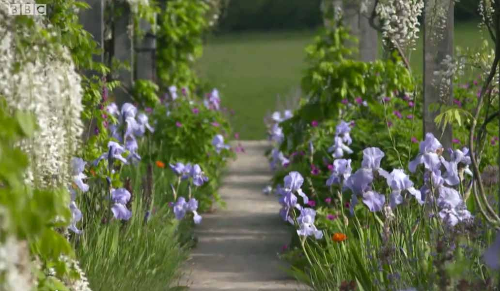 Gardeners' World BBC, screenshot, pale lavender blue irises