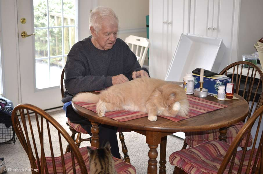 Santana and Dad sitting in front of the computer, by Elizabeth Ruffing