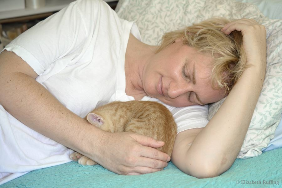 Juno, orange kitten, napping next to me, by Elizabeth Ruffing