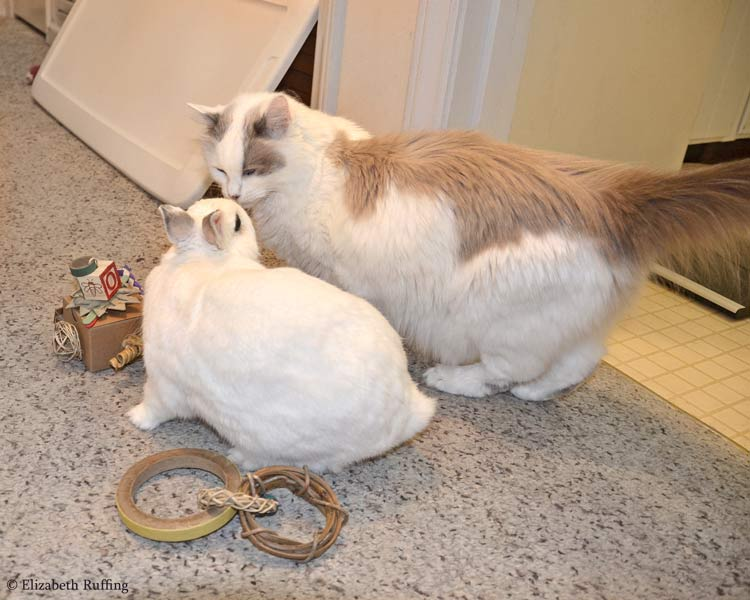 Oliver Bunny and Josephine with his new toys, by Elizabeth Ruffing
