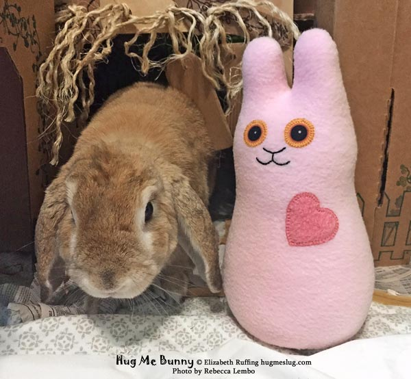 Samantha the lop-eared bunny with her pink Hug Me Bunny plush, by Elizabeth Ruffing