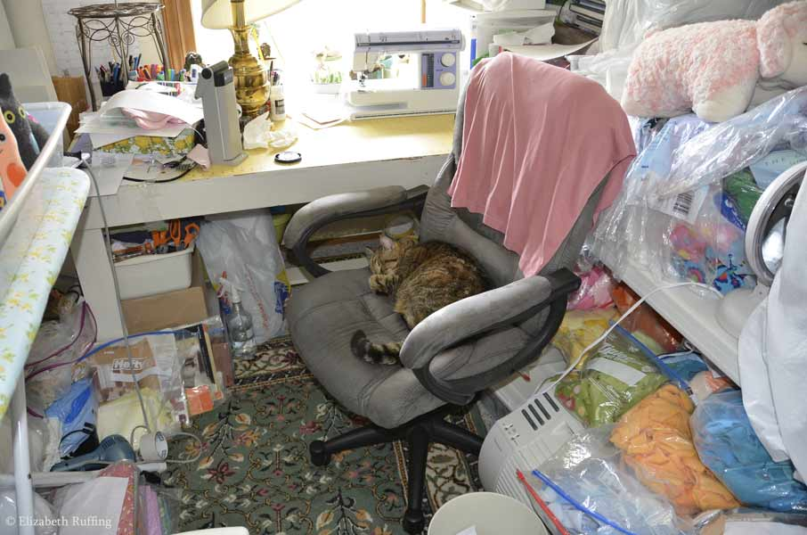 Henrietta sleeping on my workroom chair, by Elizabeth Ruffing