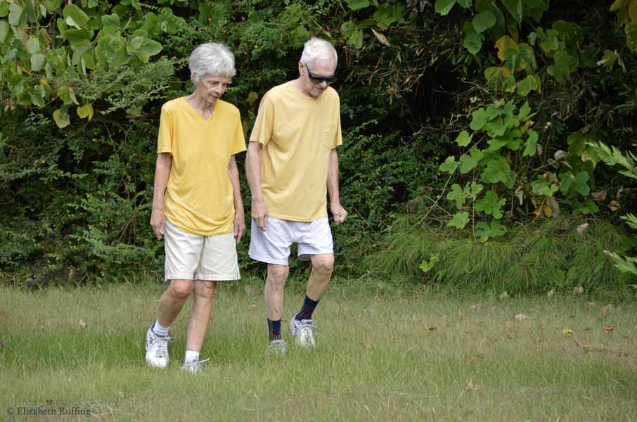 Mom and Dad out walking in the yard, by Elizabeth Ruffing