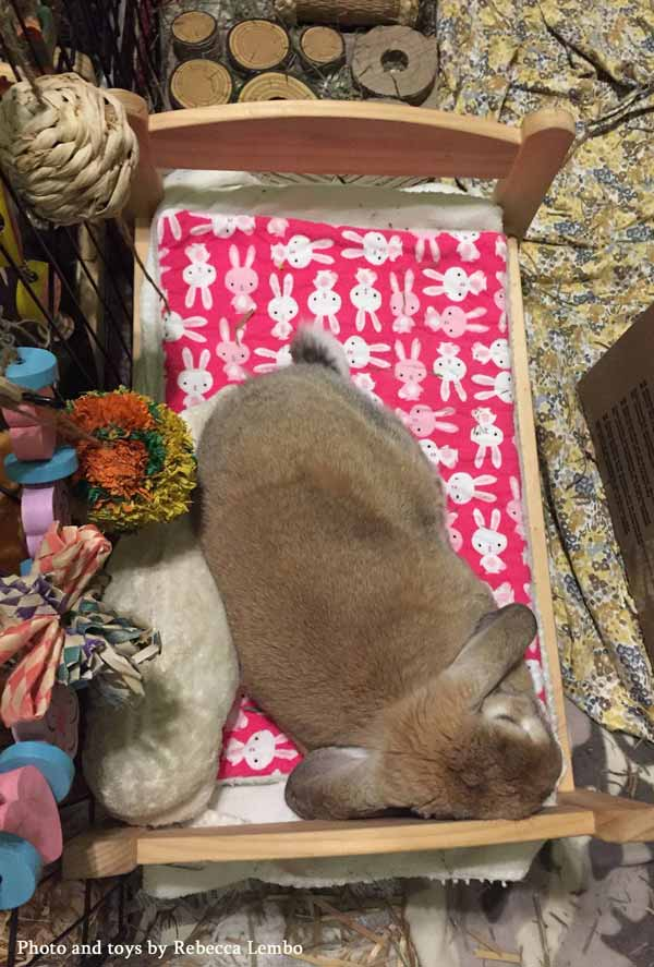 Samantha the lop-eared bunny with her pink bunny mattress pad on her IKEA doll bed