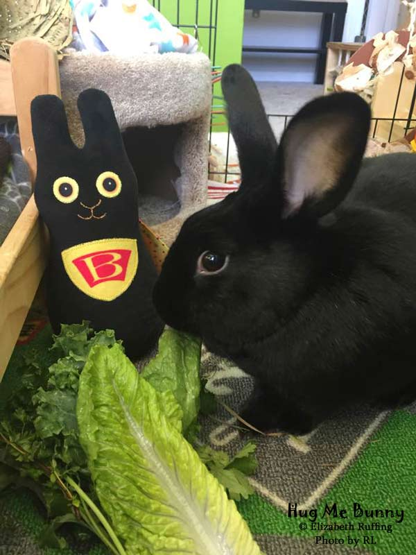 Black minky Wonder Bunny, superhero handmade plush stuffed animal rabbit, by Elizabeth Ruffing, with black rabbit