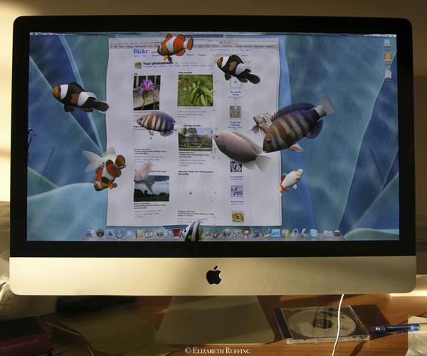 3D Desktop Aquarium