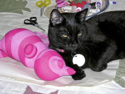 Hug Me! Sock Kitten by Elizabeth Ruffing and a Kitty Helper