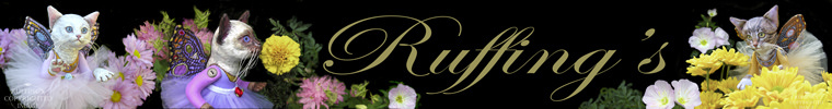 Ruffings' new Etsy shop banner by Elizabeth Ruffing