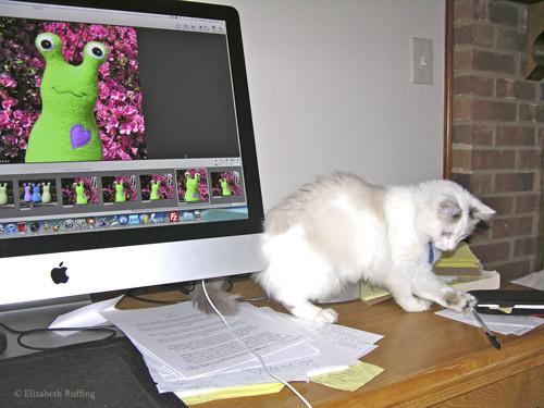 Fleece Hug Me Slug by Elizabeth Ruffing, Kitten stealing my pen