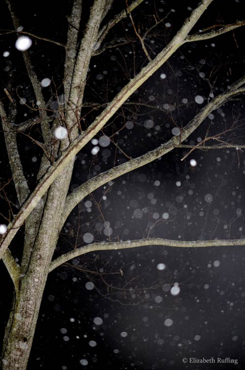 Our only snowfall this year, at night, by Elizabeth Ruffing