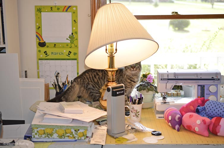 Tabby cat checking out my desk, by Elizabeth Ruffing