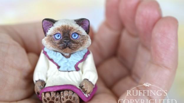 juliette-ragdoll-kitten-hand