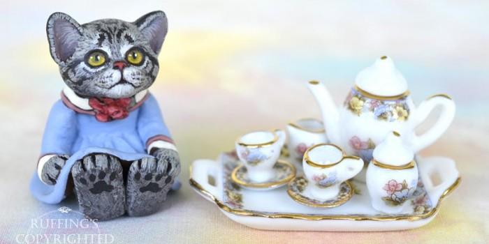 gracie-american-shorthair-kitten-tea-3r