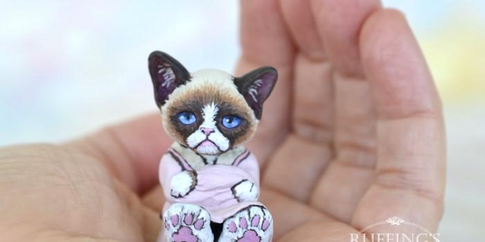 sweetie-crabby-ragdoll-kitten-hand