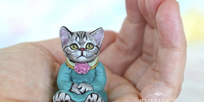 gretchen-american-shorthair-kitten-hand