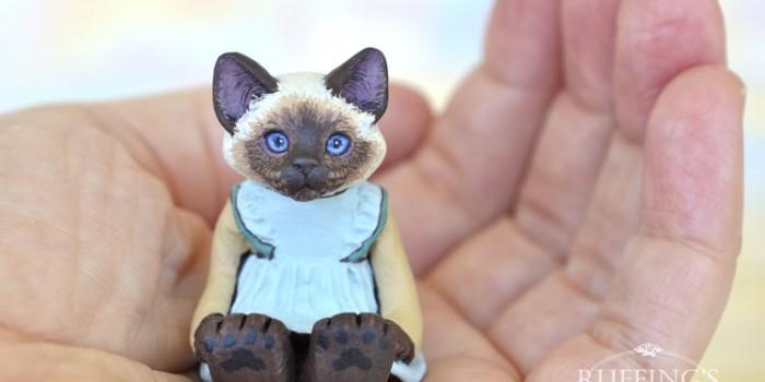 claudette-ragdoll-kitten-hand