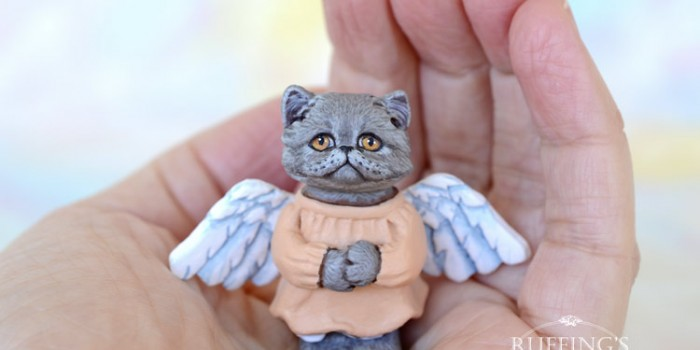 willa-blue-persian-angel-kitten-hand