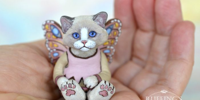 tianna-ragdoll-fairy-kitten-hand