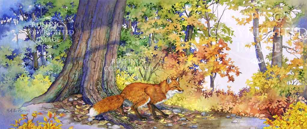 "Into the Clearing"", original watercolor painting of a red fox in the autumn forest by artist A E Ruffing"